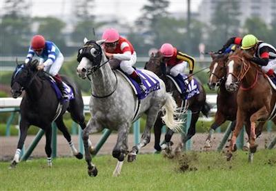 ゴールドシップが横山典弘を背に凱旋門賞制覇を目指す!