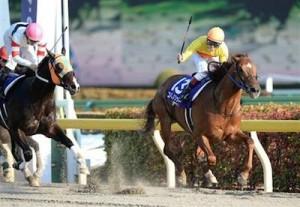 コパノリッキーが年度代表馬