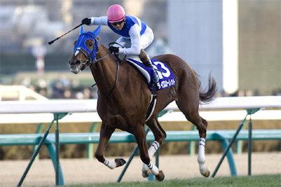 最強牝馬はジェンティルドンナではなくダイワスカーレット!?