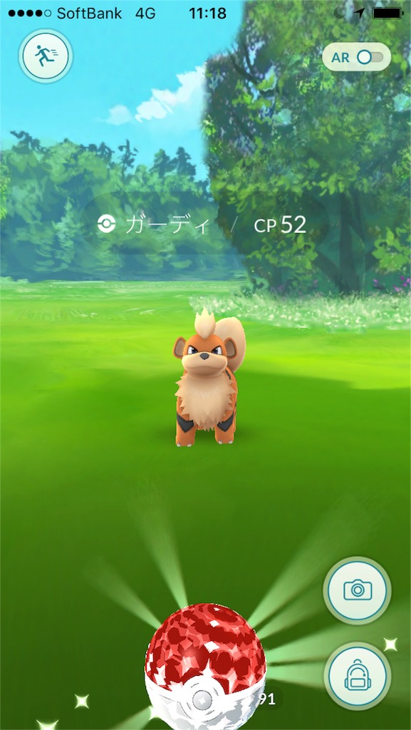 Pokémon GOのエンカウントと言う言葉の意味を知っていますか?