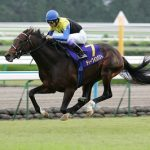 「日本近代競馬の結晶」と呼ばれた馬「ディープインパクト」