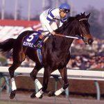 馬って不思議な動物!牡馬と牝馬の能力の差が少ない!