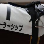 2012年有馬記念ファン投票結果