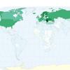 【平均ネット接続速度】日本が世界1位!