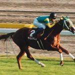 武豊との出会いで最強馬となった「稀代の逃亡者サイレンススズカ」