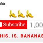 約3ヶ月間でYouTubeチャンネル登録1000人を達成しました!