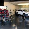 レクサス北大路と安藤人形店のコラボ!還暦雛が店内に展示中です!